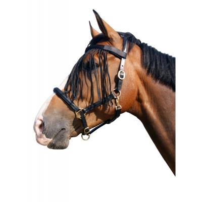 QHP Vliegenfrontriem Pony